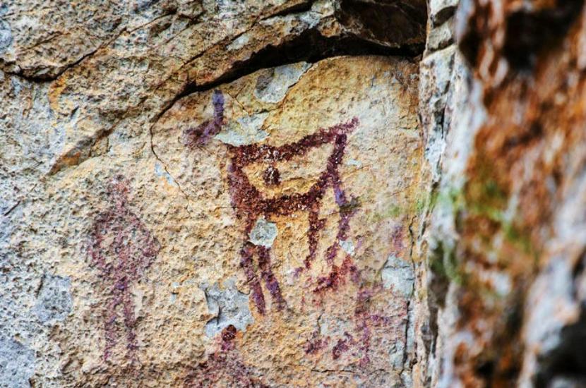 Красный олень на скале